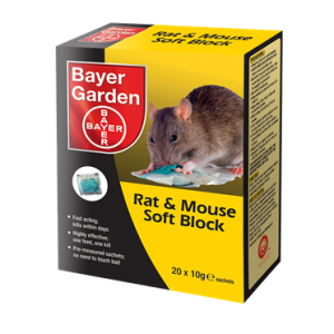 Rat and Mouse Soft block